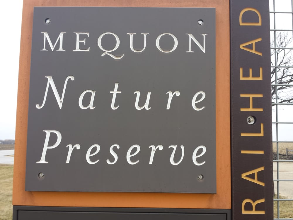 Rice Paddies at the Mequon NaturePreserve?